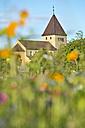 Germany, Baden-Wurttenberg, Reichenau Island, Church of St George in Oberzell - SH001034