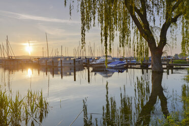 Germany, Baden-Wurttenberg, Reichenau Island, Boats in Mittelzell marina - SH001066