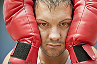 Boxer with red boxing gloves, portrait - PAF000070