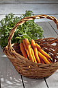 Bunch of carrots in basket on wooden table - CSF020434