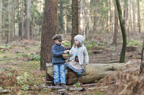 Germany, North Rhine-Westphalia, Moenchengladbach, Scene from fairy tale Hansel and Gretel, brother and sister eating bread in the woods - CLPF000022