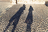 Spain, Lanzarote, Arrecife, silhouettes of family on pavement - MFF000701