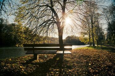 Germany, Bavaria, Landshut, autumn atmosphere at Isar river - SARF000167