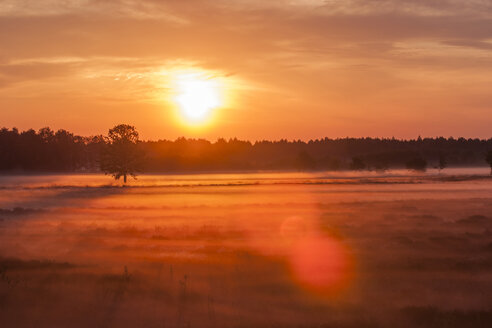 Germany, North Rhine-Westphalia, Recker Moor, Landscape at sunrise - PAF000104