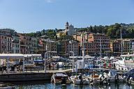 Italy, Liguria, Santa Margherita Ligure, Old town and harbor - AMF001472