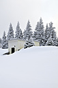 Germany, Thurinigia, Oberhof, Hut at the forest in winter - BR000007