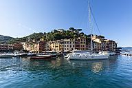 Italy, Liguria, Portofino, View of harbour - AM001493
