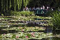 France, Eure, Giverny, Claude Monet's garden with lily pond - BI000196