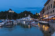 Italy, Liguria, Portofino, Boats in harbour at blue hour - AMF001502