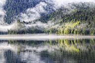 Canada, British Columbia, Khutzeymateen Valley, Khutzeymateen Provincial Park, fjord with fog - FOF005422