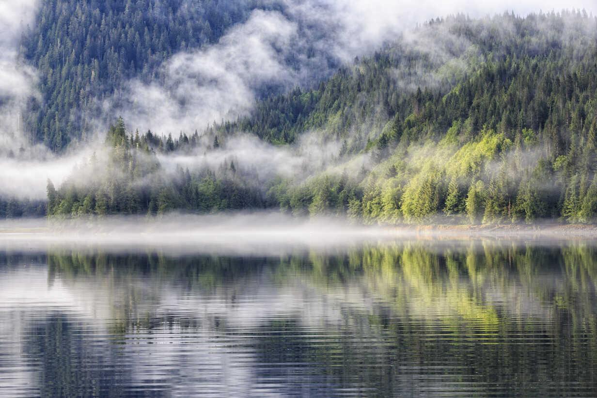 Canada, British Columbia, Khutzeymateen Valley, Khutzeymateen Provincial Park, fjord with fog - FOF005422 - Fotofeeling/Westend61