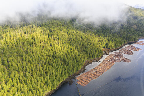 Canada, British Columbia, Prince Rupert, wood industry, wood at the seaside - FOF005432