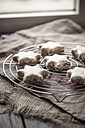 With powdered sugar sprinkled star-shaped cinnamon cookies on cooling grid - SBDF000362
