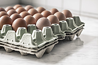 Carton palette with brown eggs - SBDF000365