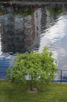 Sweden, Halmstad, single tree and water reflection at Nissan river - VI000226