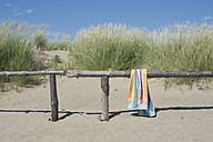 Italy, Bath towel on railing at beach dunes at Adriatic sea - ASF005254