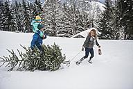 Austria, Salzburg Country, Altenmarkt-Zauchensee, Family walking in snow, carrying Christmas tree - HHF004667