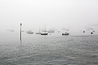 France, Bretagne, Saint-Malo, Harbor in fog - BIF000212