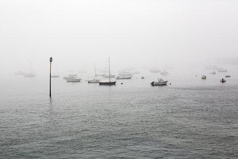 France, Bretagne, Saint-Malo, Harbor in fog - BIF000212