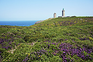France, Bretagne, Cap Frehel, Lighthouse and landscape with gorse and heather - BIF000248