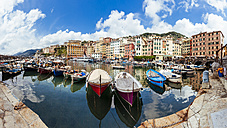 Italy, Liguria, Camogli, Boats in harbour - AMF001510