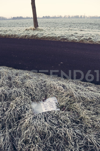 Germany, Baden-Wuerttemberg, Tuebingen, Einsiedel, discarded calendar at roadside ditch - LVF000415
