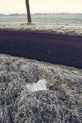 Germany, Baden-Wuerttemberg, Tuebingen, Einsiedel, discarded calendar at roadside ditch - LVF000415