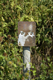 Old rusted plate - AXF000614