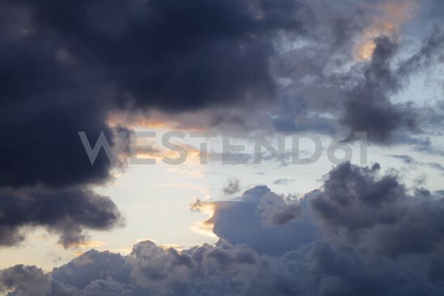 Germany, Schleswig-Holstein, Fehmarn, dark clouds - WIF000242 - Wilfried Wirth/Westend61