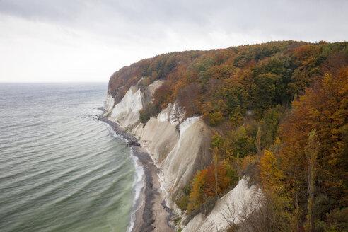 Germany, Mecklenburg-Western Pomerania, Ruegen, Jasmund National Park, chalk cliff - WIF000262
