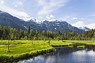USA, Alaska, Hyder, Stewart, River landscape at Fish Creek - FOF005447