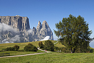Italy, South Tyrol, Seiseralm and Schlern group - WW003065