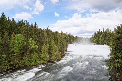Canada, British Columbia, Wells Gray Provincial Park, Murtle River - FOF005472