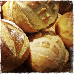 Multiple loaf of round bread, close up - ABAF001130