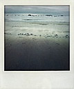 sea, beach, cloudy, stormy, ebb, distant, Netherlands - FMKF001109