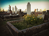 cemetery, Sydney, Australia - FB000161