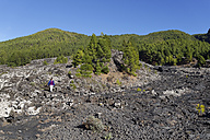 Spain, Canary Islands, La Palma, Coladas de San Juan, Cumbre Vieja, Lava flow - SIEF004970