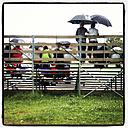 Spectators with umbrella on a tribune, Gothenburg, Sweden - DIS000292
