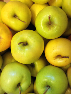 Golden Delicious apple (Malus domestica) - JEDF000049