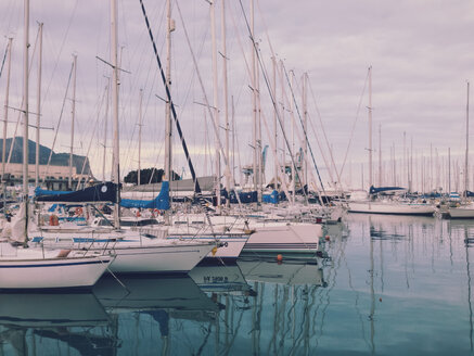 Yachts in the marina, Palermo, Sicily, Italy - MEAF000019