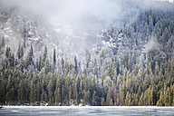Germany, Bavaria, Frozen Grosser Arbersee - SBDF000447
