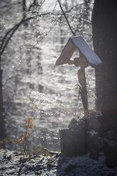 Germany, Bavaria, Bodenmais, Wayside cross in winterly forest - SBDF000450