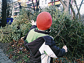 Little boy waving good-bye to the Christmas Tree - ZMF000094