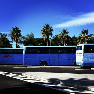 Buses at Aeropuerto Reina Sofia, Tenerife, Spain - DIS000333