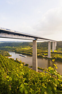 Germany, Koblenz, View of motorway bridge Moselle Viaduct crossing Mosel Valley - WDF002164