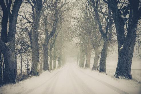 Germany, Mecklenburg-Western Pomerania, Ruegen, Snow storm - MJF000659