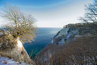 Germany, Mecklenburg-Western Pomerania, Ruegen, Jasmund National Park in winter - MJF000708