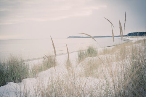 Germany, Mecklenburg-Western Pomerania, Ruegen, Baltic Sea in winter - MJF000680