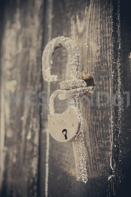 Frozen padlock at wooden door - MJF000672