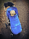 Child in Stroller, zipped up to the chin, Bonn, North Rhine-Westphalia, Germany - MFF000791